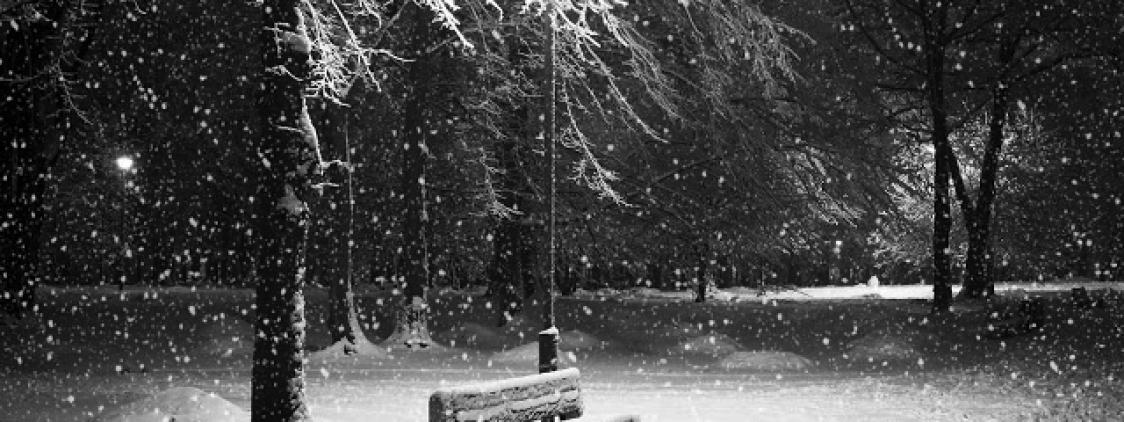 Mevsimlerin Gölgesinde İnsan